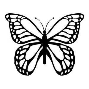 Folienaufkleber Motiv Schmetterling 02
