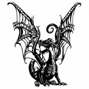 Weisskopfseeadler Vorlagen Tattoo Pictures to Pin on Pinterest